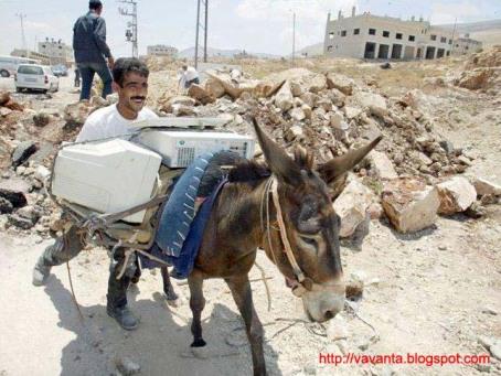 bloggerhorse.jpg